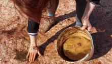 Atığın İhtimalleri: Biçim ve Süreç
