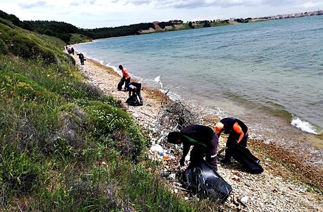 Çamlık Piknik Alanı ve Sahili Temizlendi